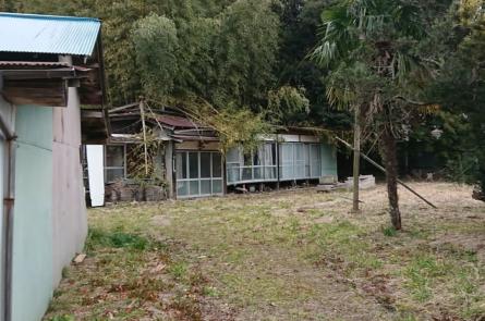 自然に潰された廃屋